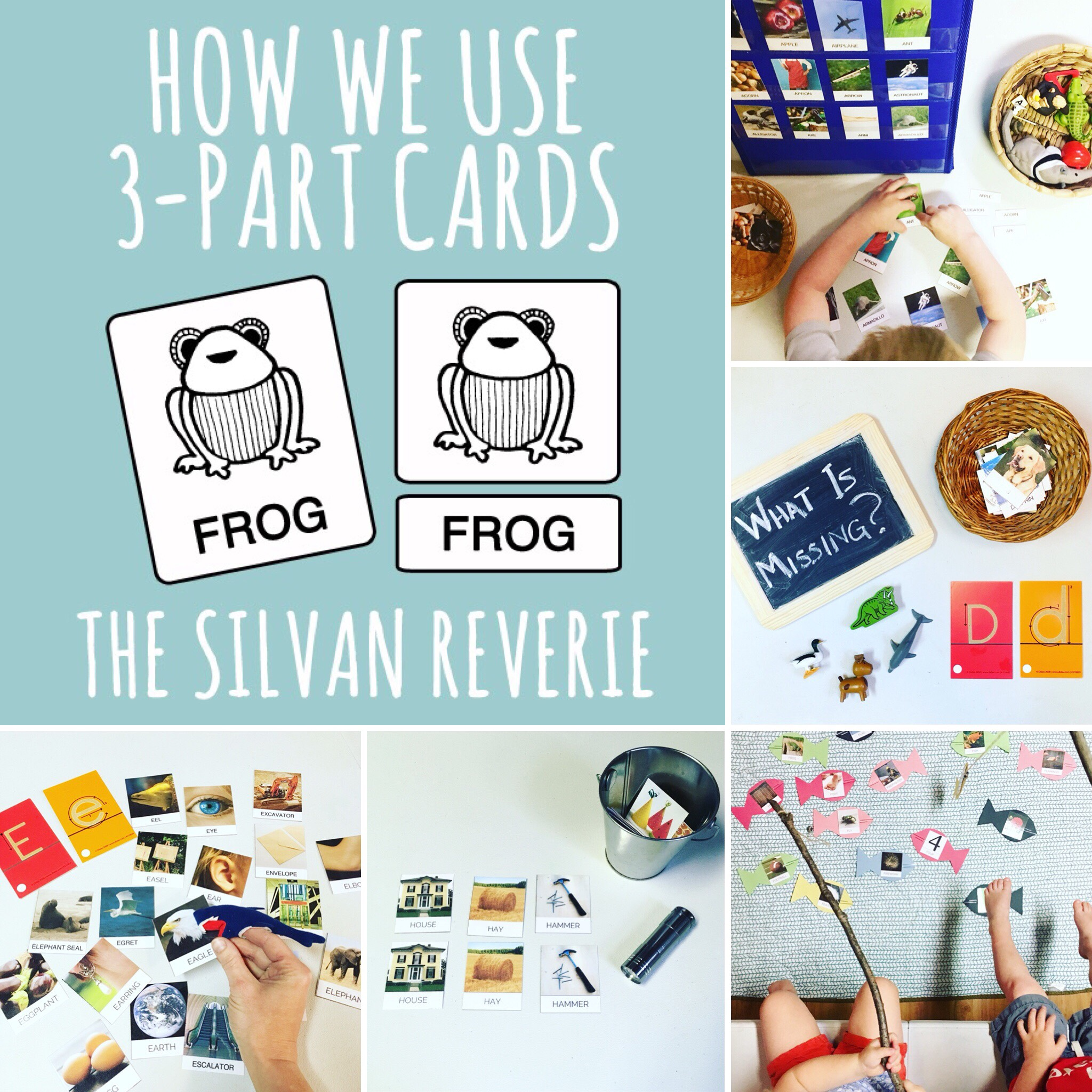 3-PART CARDS