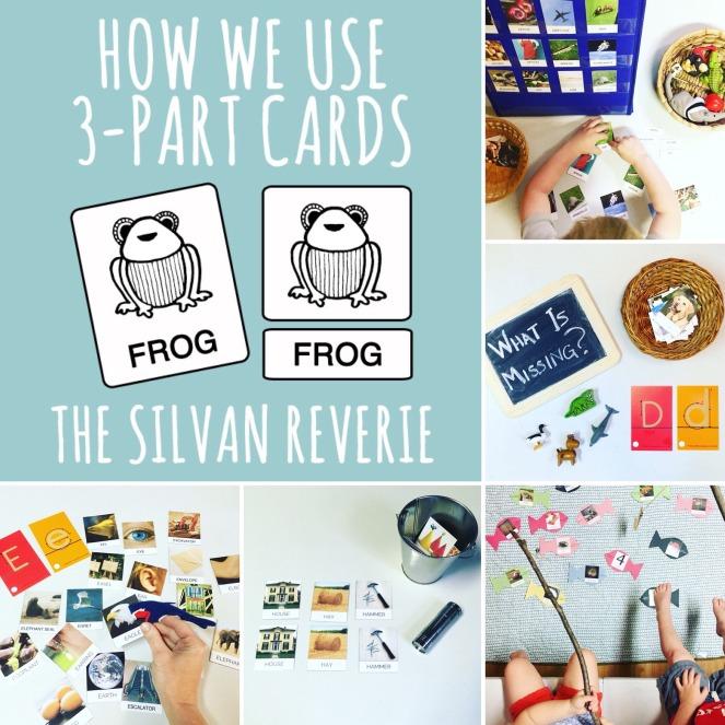 3 part cards.jpg