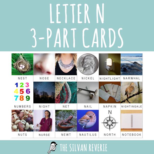 LETTER N 3-PART CARDS