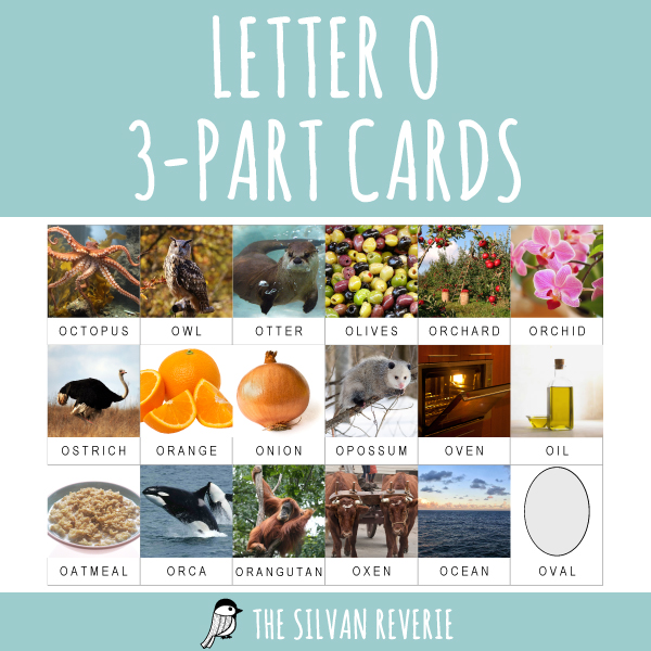 LETTER O 3-PART CARDS
