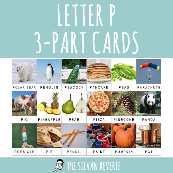 LETTER P 3-PART CARDS
