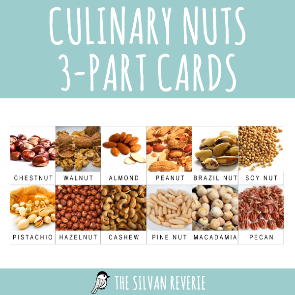 CULINARY NUTS 3-PART CARDS