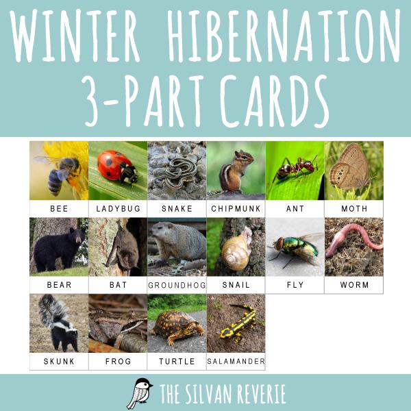 HIBERNATION 3-PART CARDS