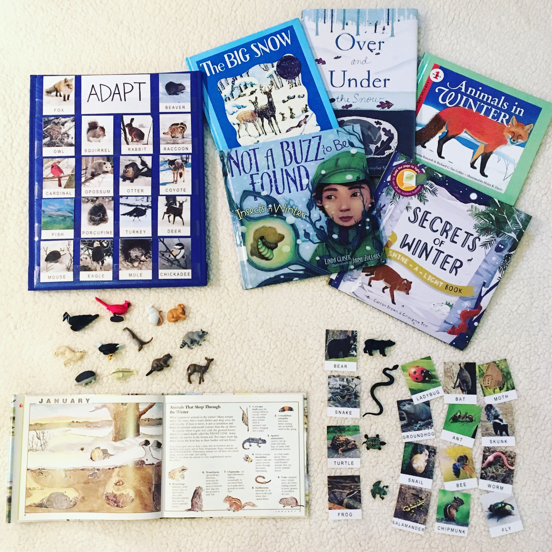 Animals in Winter: Preschool Unit Resources