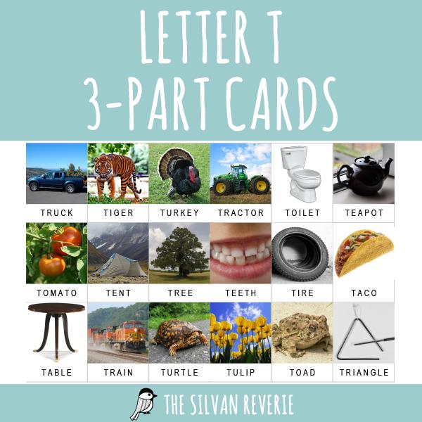 LETTER T 3-PART CARDS