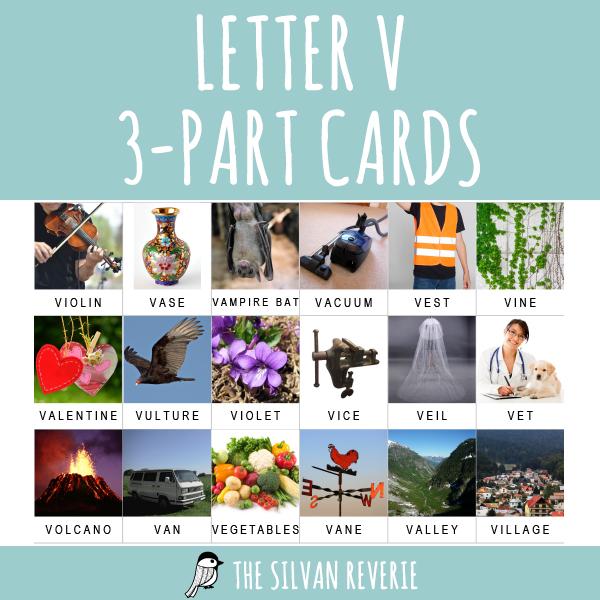 LETTER V 3-PART CARDS