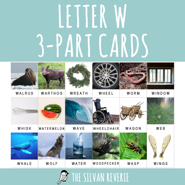 LETTER W 3-PART CARDS