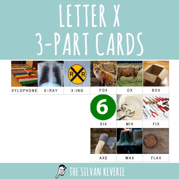LETTER X 3-PART CARDS
