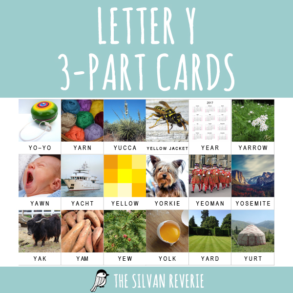 LETTER Y 3-PART CARDS