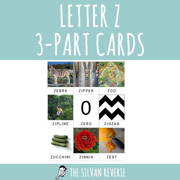 LETTER Z 3-PART CARDS