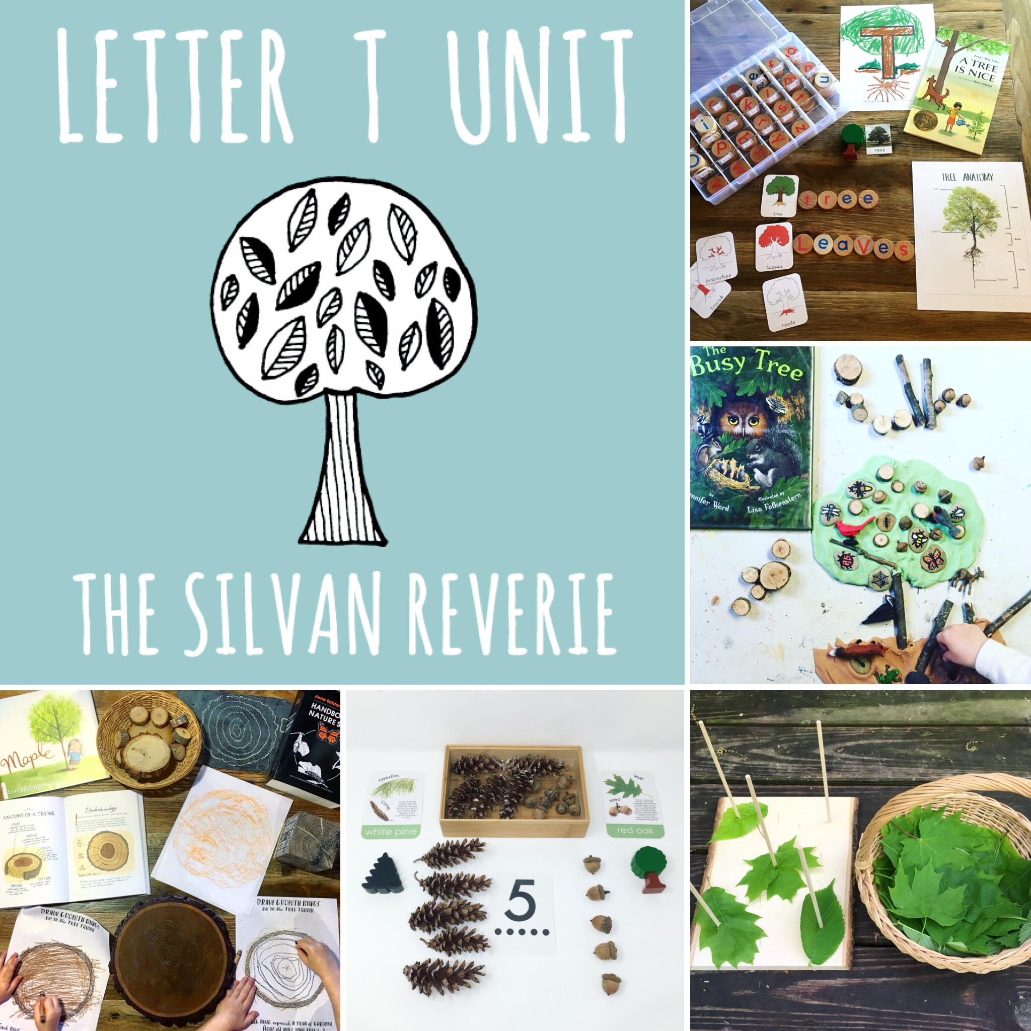 Letter T Preschool Unit
