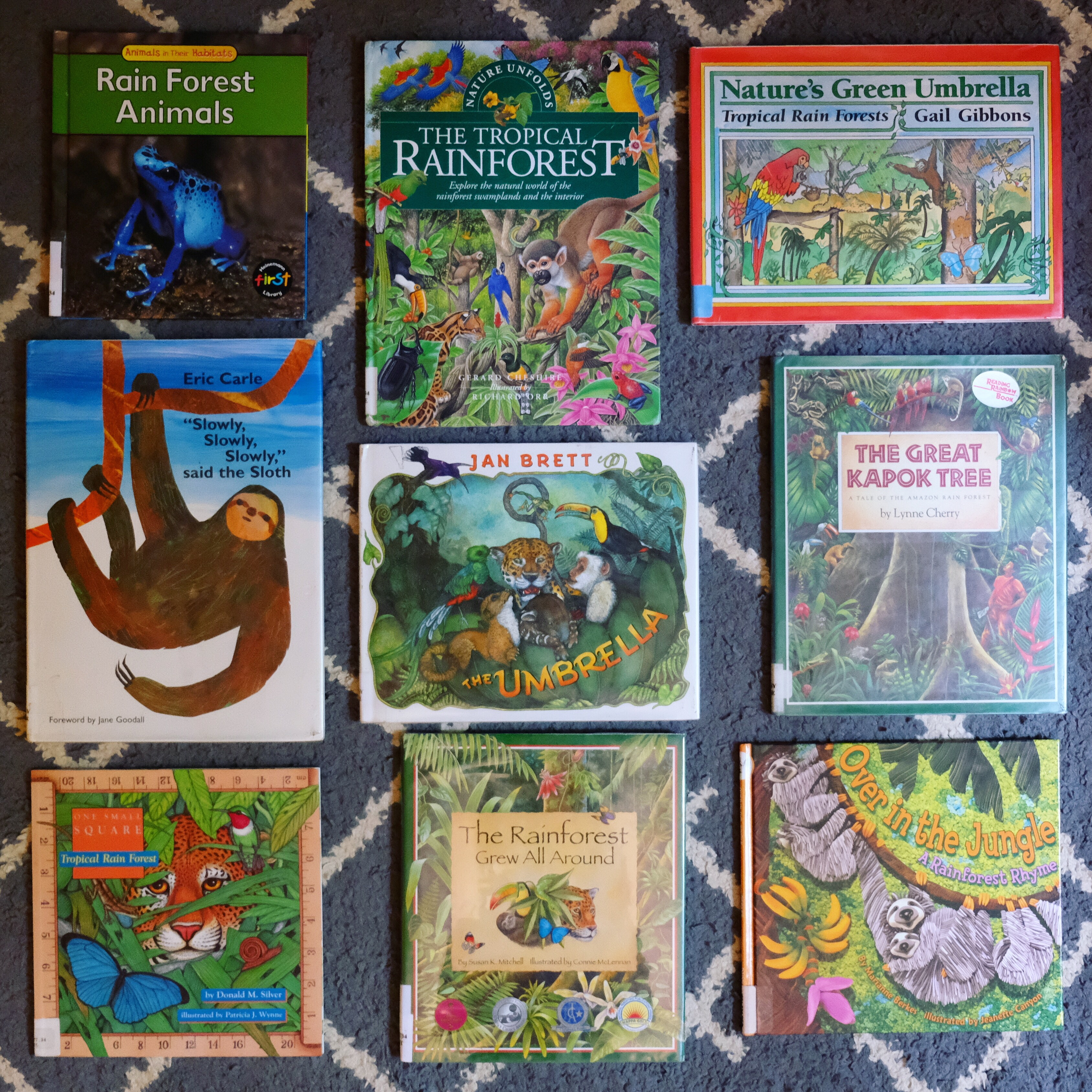 Rainforest Themed Children's Books