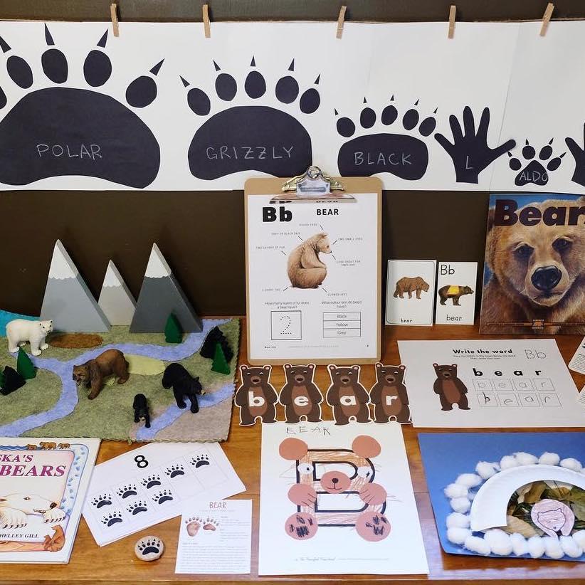 Bears Nature Study