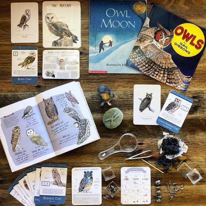 OWLS NATURE STUDY
