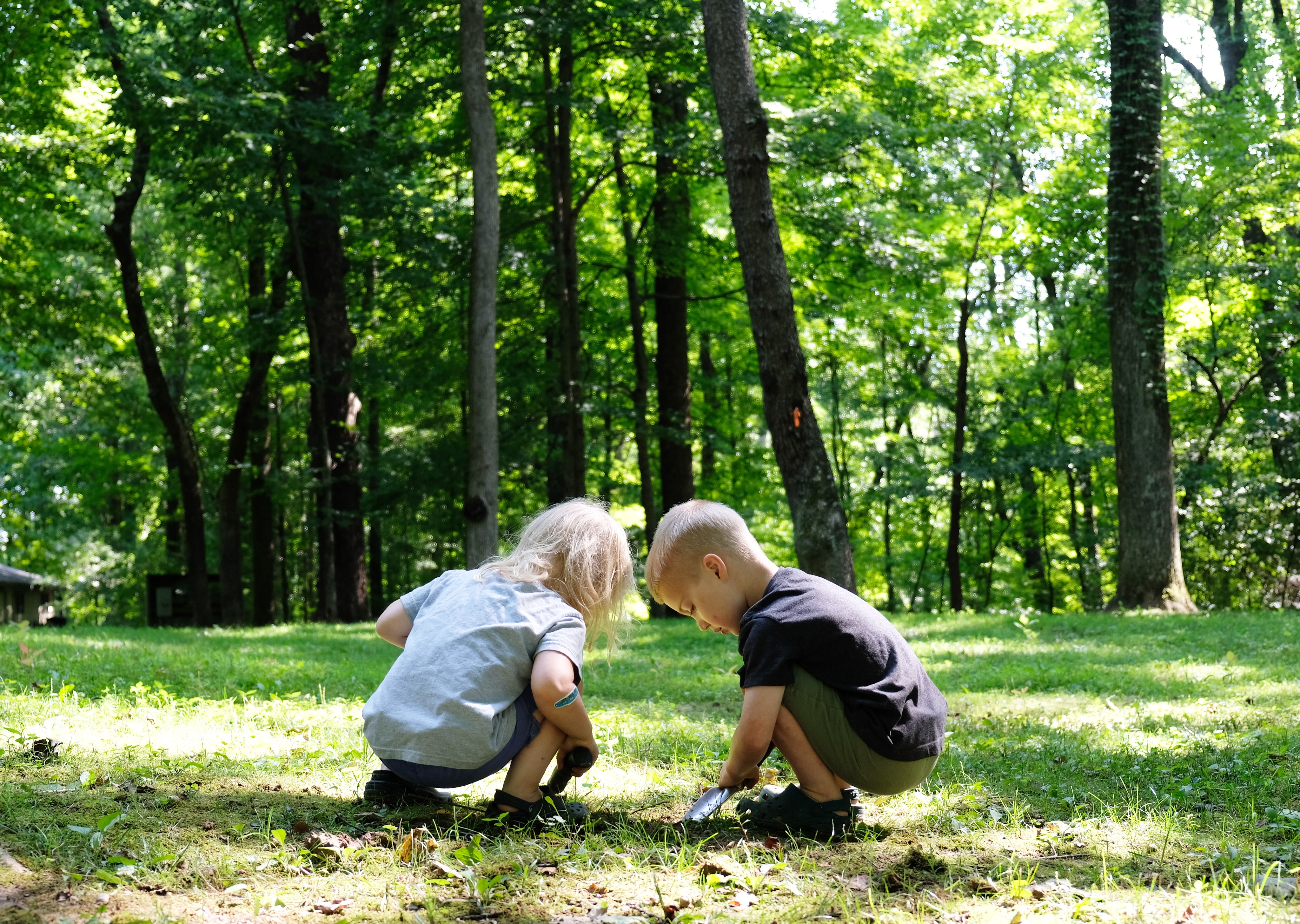 The Silvan Reverie - Favorite Nature Play Books