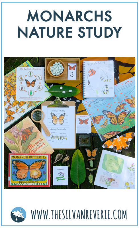 Monarchs Nature Study.jpg