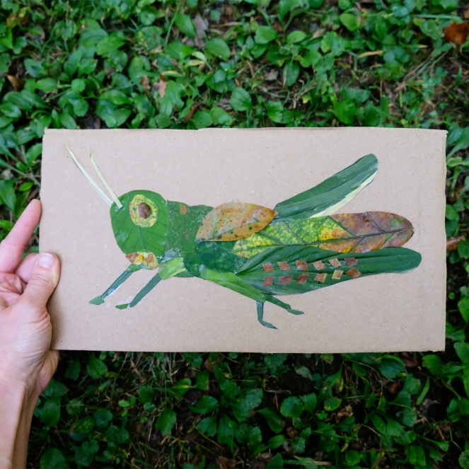 Grasshopper Leaf Art Project - The Silvan Reverie