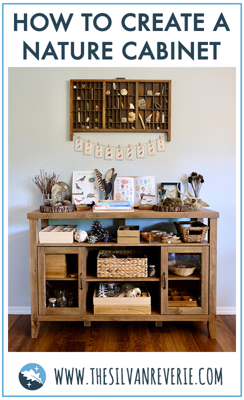 How to Create a Nature Cabinet